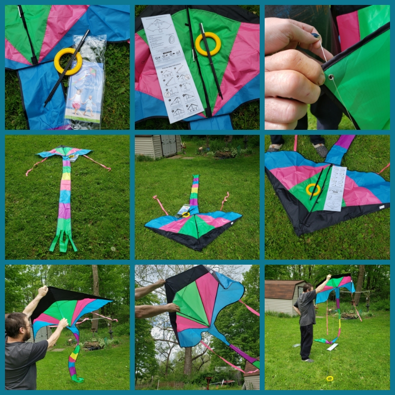 Great kite with mild wind