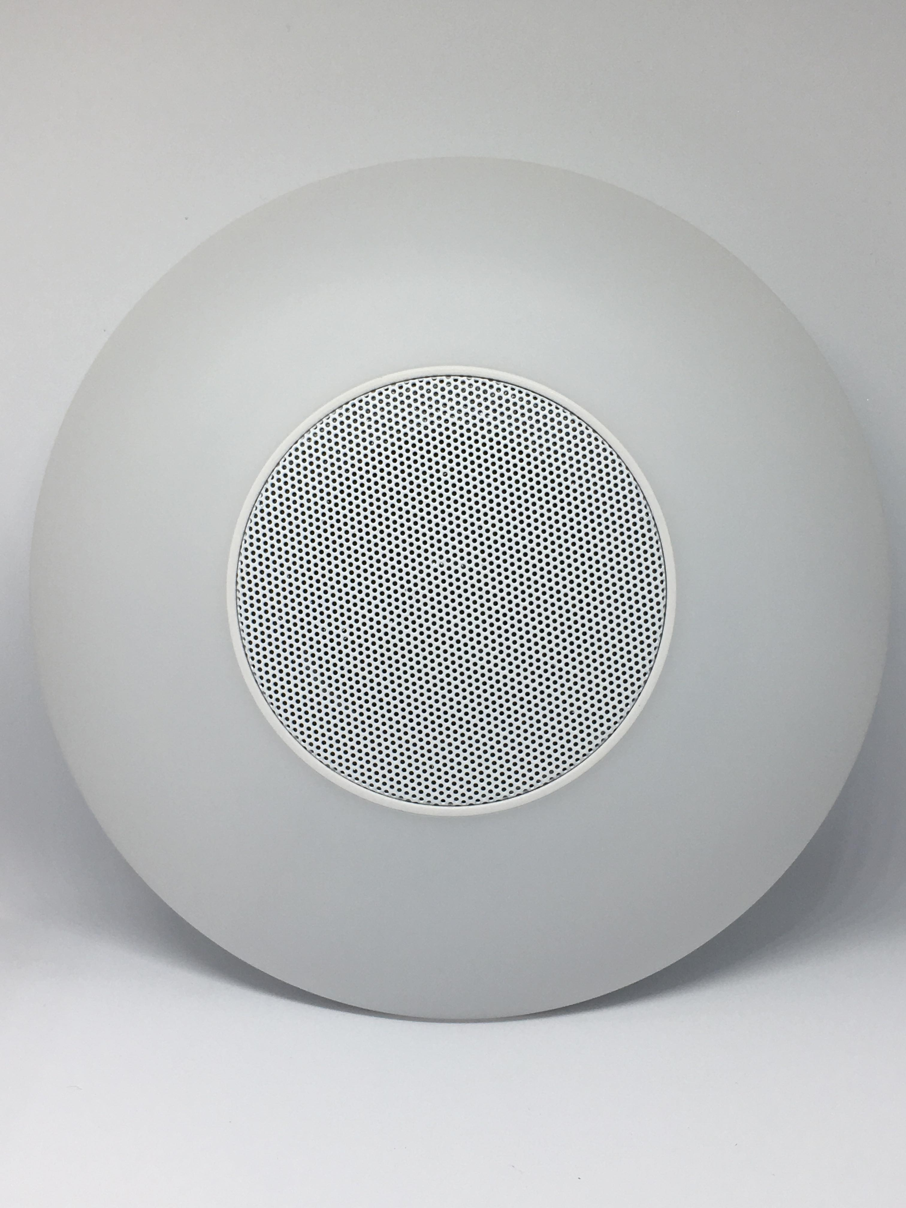 Front of the speaker