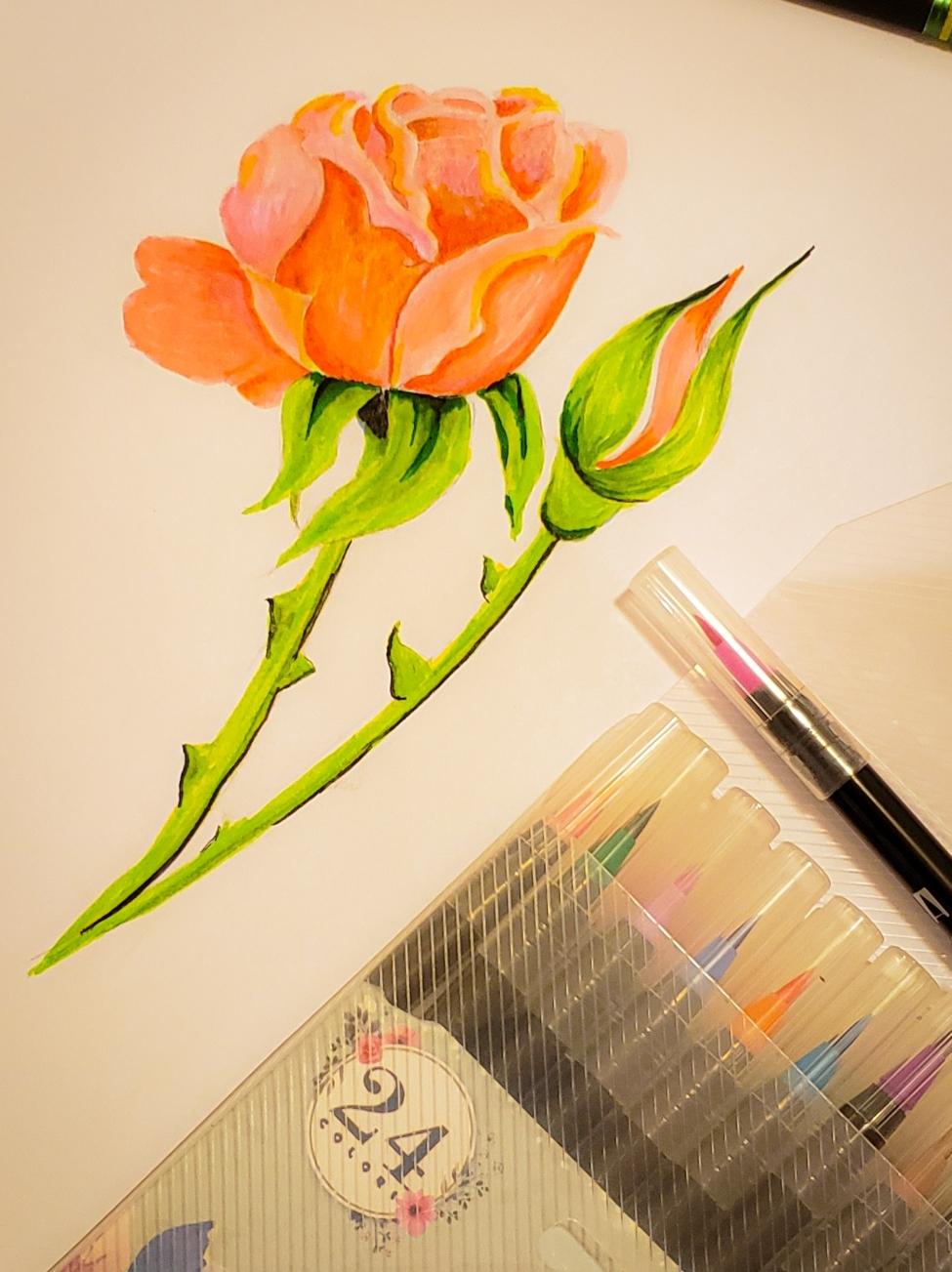 watercolor pens.