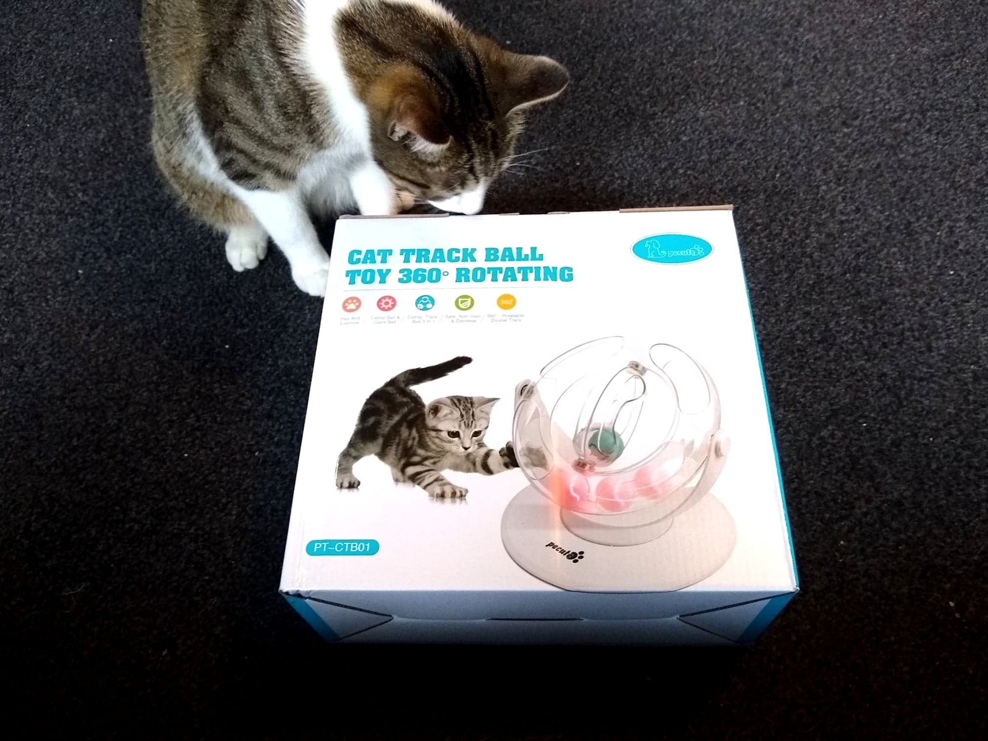 Pecute 360 Degrees Cat Roller Toy