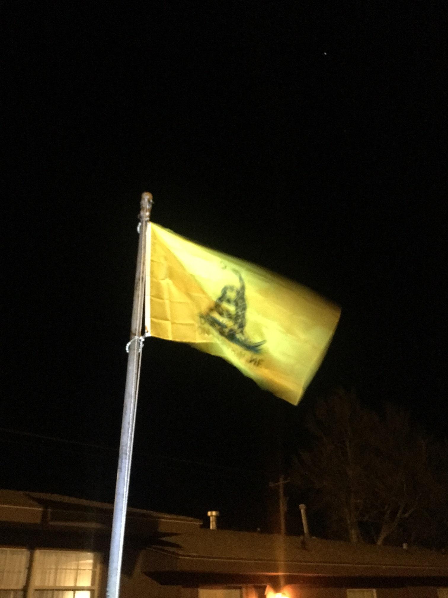 Gadsden Snake Flag