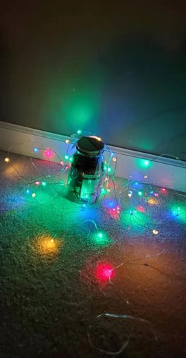 Lumary Music Sync 100 LED 33ft String Light