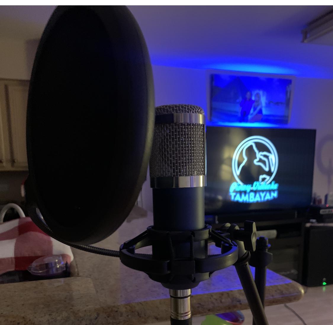 Decent sound for karaoke singing