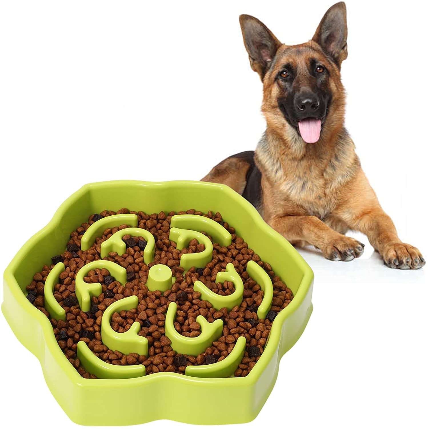 Fantastic Product! Perfect for my Dog!
