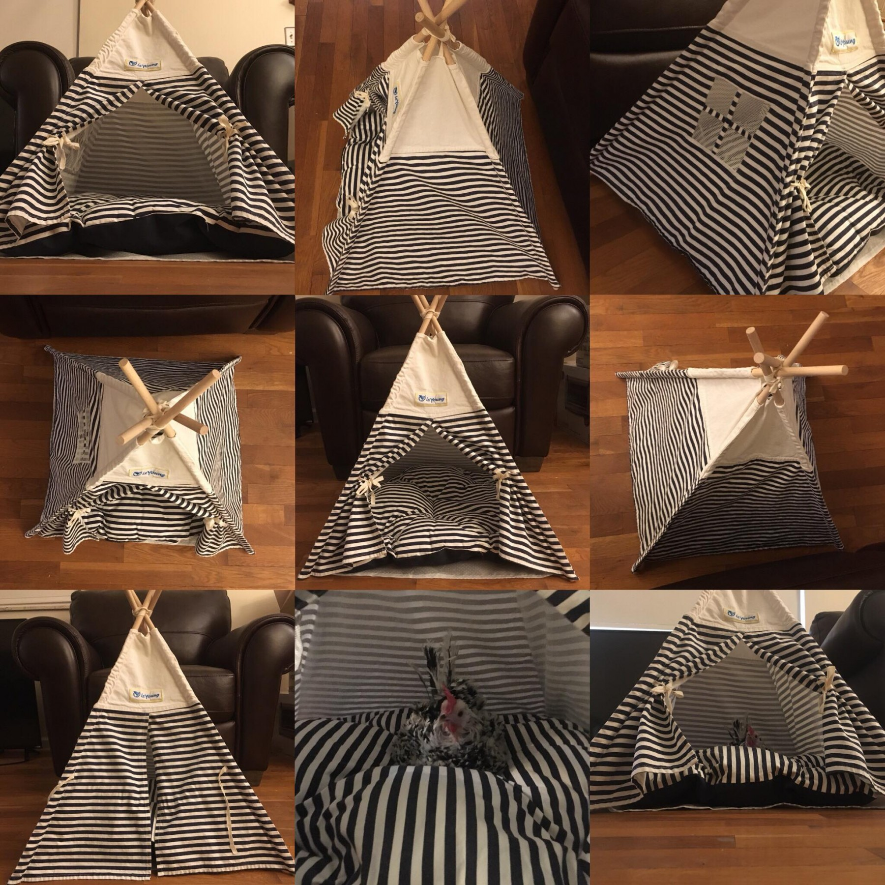 Adorable Pet Tent/Teepee
