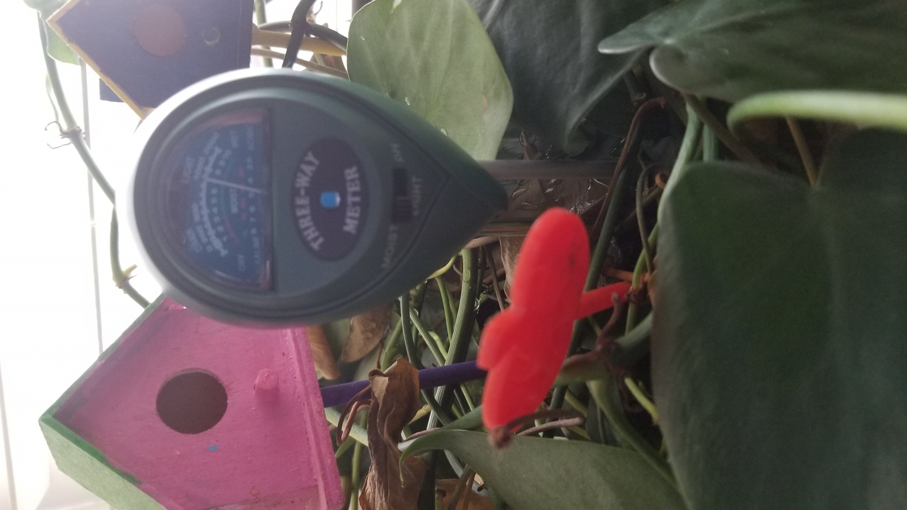 Easy way to monitor levels in the soil