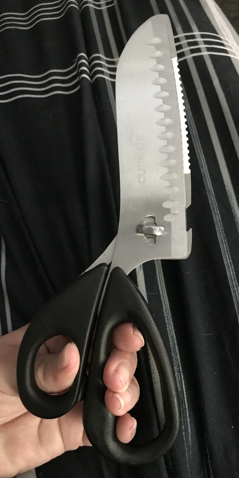 Amazing heavy duty kitchen shears!