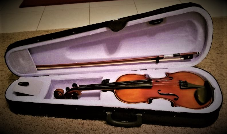 Mugig Solid Wood Full Size Violin Kit with Case