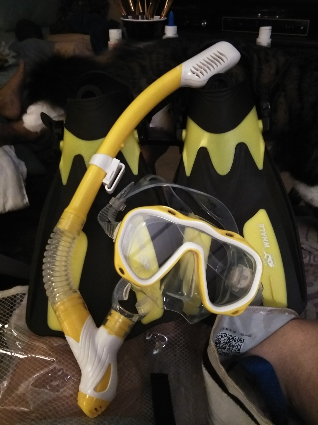 Whale dive mask and fins