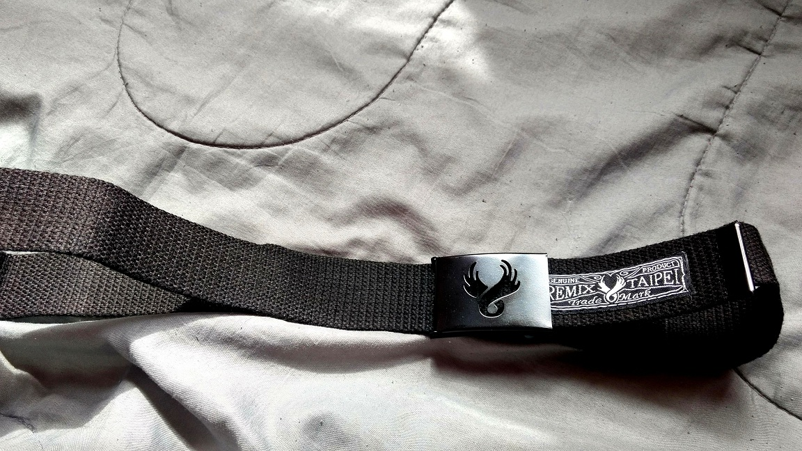Ayliss Canvas Web Belt With Eagle Design