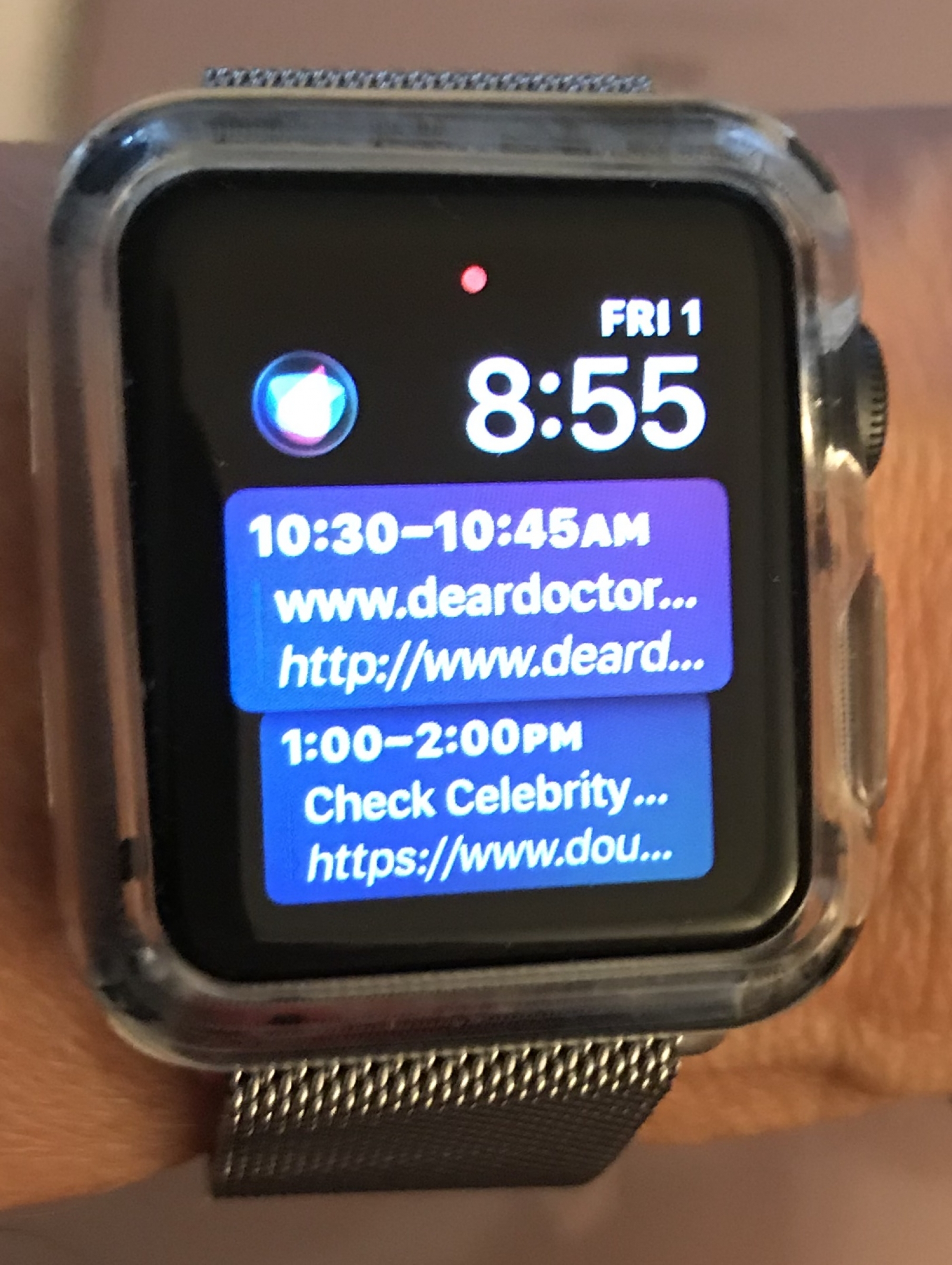Steel Mesh Band is an Apple Watch Upgrade