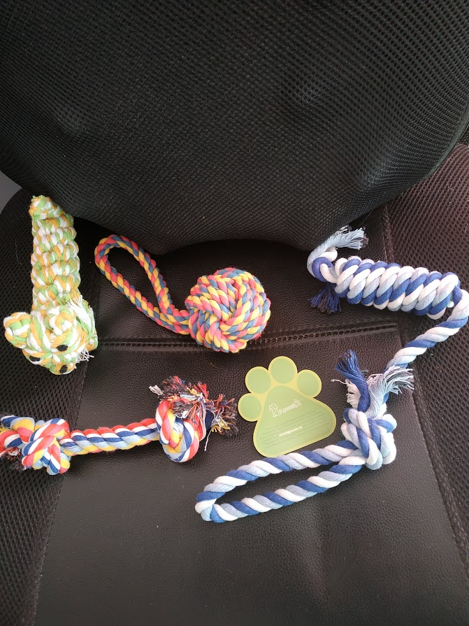 lot de 4 jouets pour chien