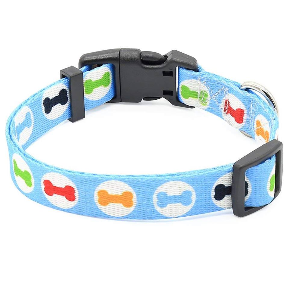 Really sporty collar