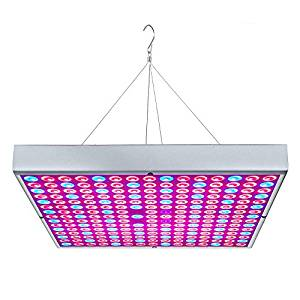 One Amazing Grow Light !!