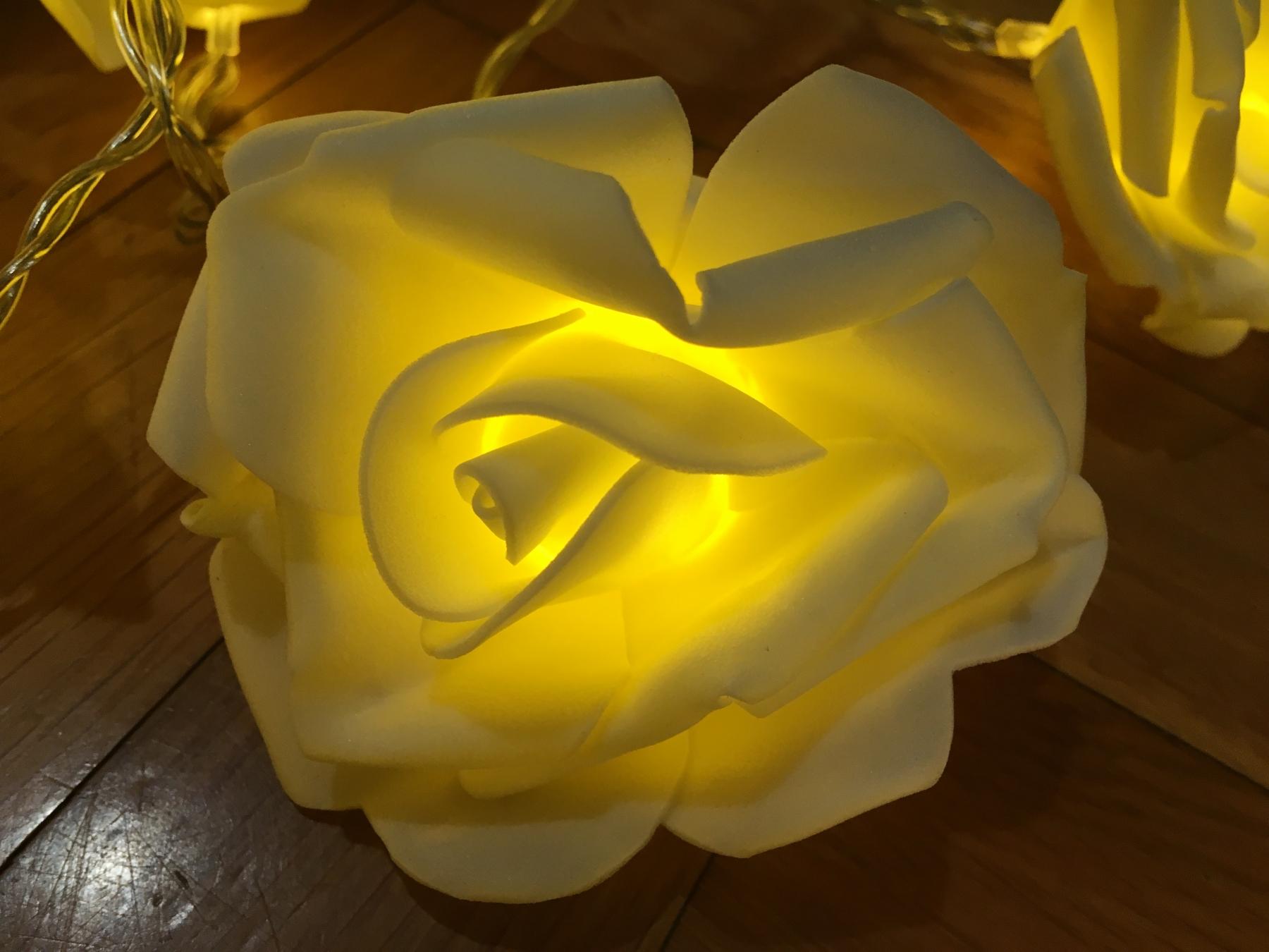 Preciosas rosas blancas